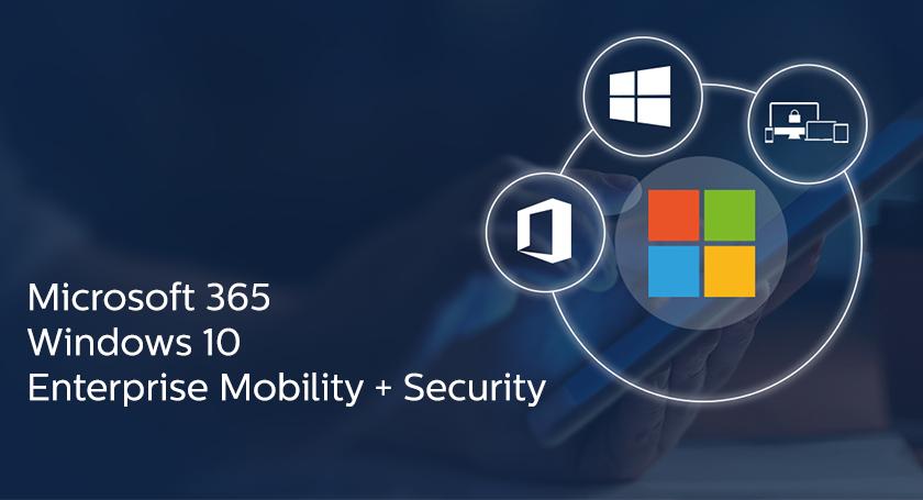 microsoft-365-coegi